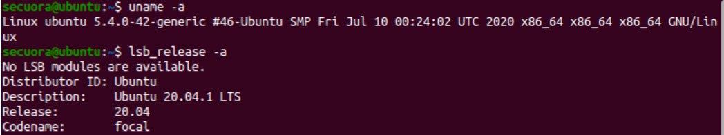 detalles maquina virtual ubuntu 20.04 para explotación práctica
